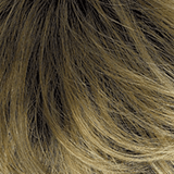 Color 26GR = GOLD BLONDE WITH LIGHT BLONDE HIGHLIGHTS AND BROWN ROOTS
