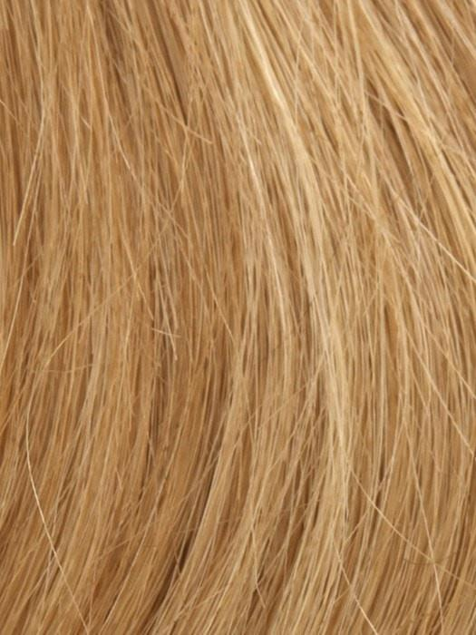 14/27/25 SUN KISSED BLONDE | Light Brown Blended with Light Red and Blonde Tones