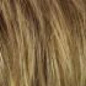 R13F25 PRALINE FOIL Neutral Medium Blonde with pale Gold highlights around the face