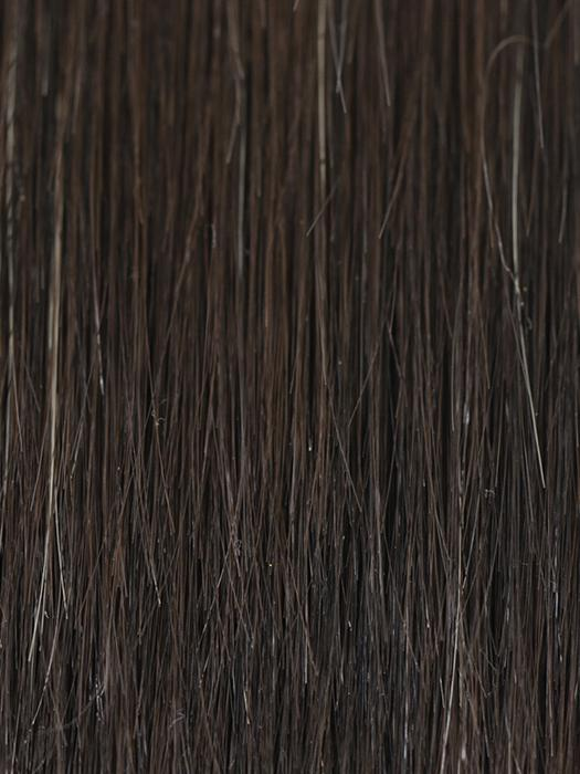 2/4R | Very Dark Brown with highlights