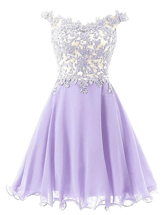 Elegant Lace Homecoming Dress