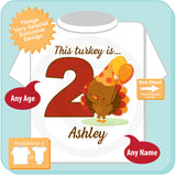 Thanksgiving Theme Second Birthday Shirt - 2nd Birthday shirt for 2 year old 08032016d