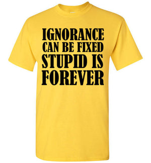 Ignorance Can Be Fixed Stupid is Forever
