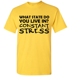 What State Do You Live In? Constant Stress T-Shirt