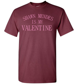 Shawn Mendes is my Valentine