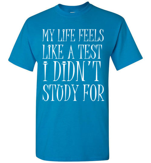 My Life Feels Like a Test I Didn't Study For