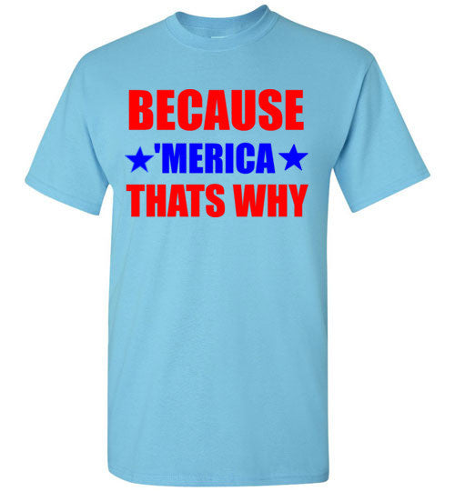 Because Merica That's Why