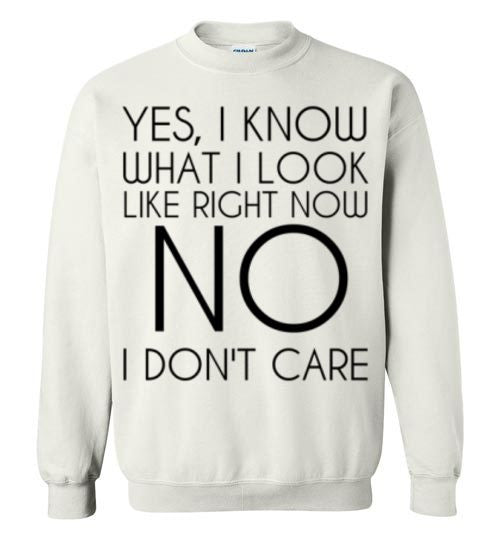 Yes I Know What I Look Like Right Now No I Don't Care Sweatshirt
