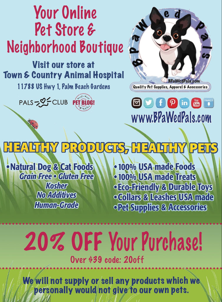 June is National Pet Preparedness Month