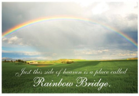 Sympathy - Rainbow Bridge