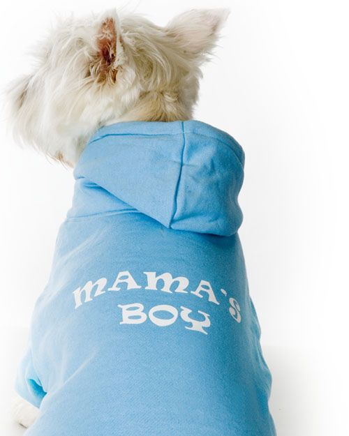 Fleece Lined Dog Sweatshirt Mama's Boy Hoodie, Blue