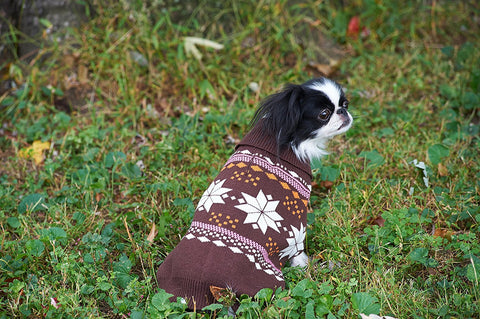 Snowflake Dog Sweater, Pink/Brown