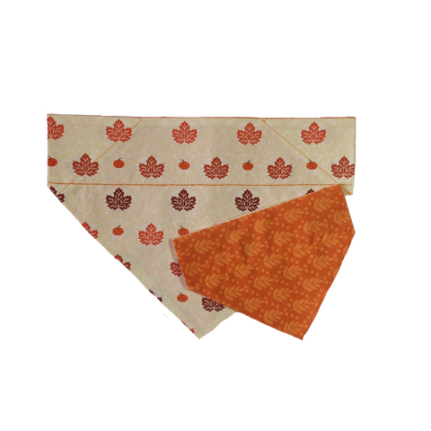 Autumn Harvest Pumpkins Over-the-Collar Dog Bandana - Reversible