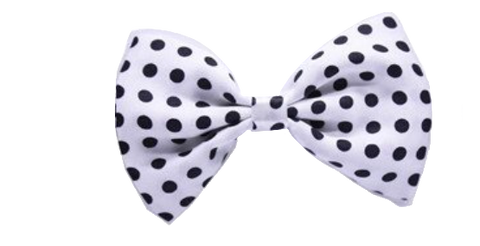Swiss Dots Black Dog Bow Tie