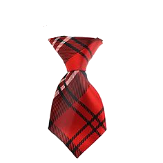 Plaid Red Dog Neck Tie