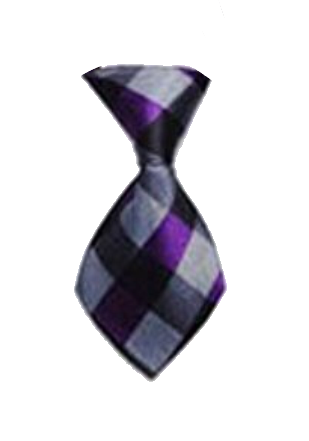 Plaid Grey/Purple Dog Neck Tie