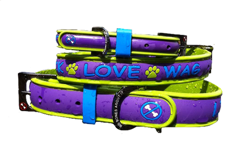 No Bones About It - Lick Love Wag Dog Collars Purple Daze