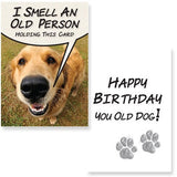 Birthday – I Smell an Old Person - BPaWed Pals, LLC