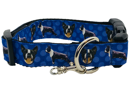 Boston Terrier Lovers Adjustable Dog Collar - Blue