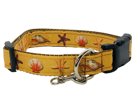 Day at the Beach Seashell Adjustable Dog Collar