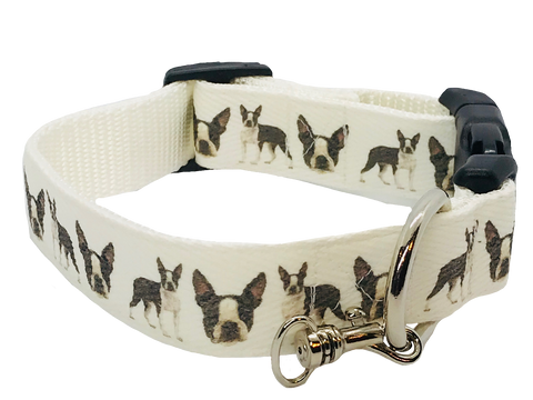 Boston Terrier Lovers Adjustable Dog Collar - White