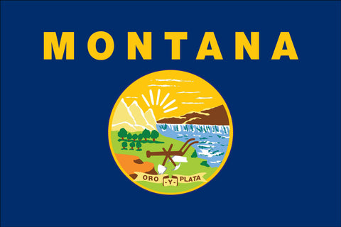 Montana Flag - Pinnacle Flags