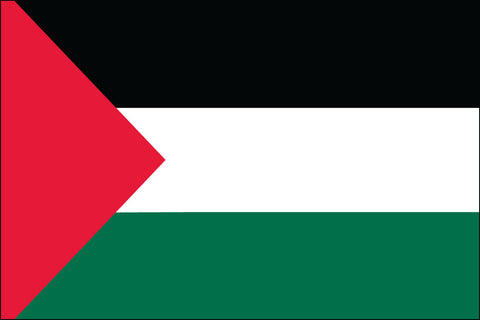 Palestinian Flag - Pinnacle Flags