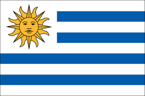 Uruguayan Flag - Pinnacle Flags
