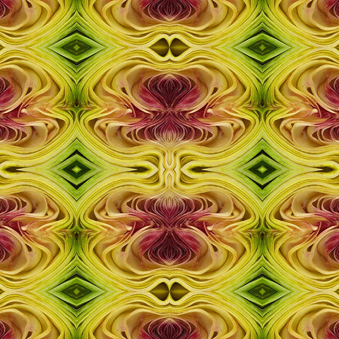 Print of artichoke kaleidoscope | Fresh Food Prints