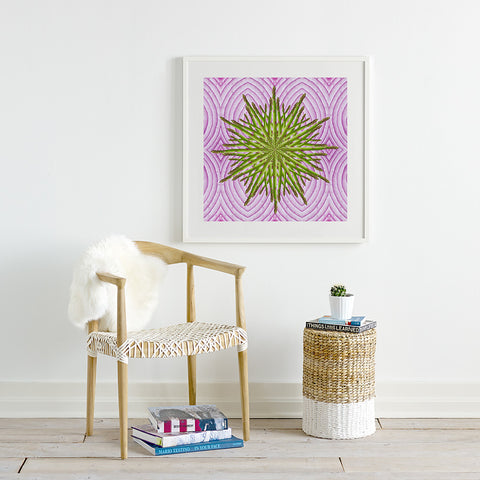 Print of Asparagus Star on Red Onions Kaleidoscope Of Food Square