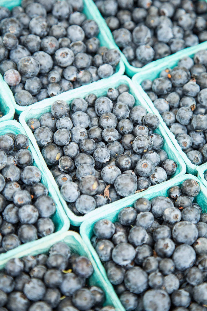Print of boxes of blueberries | Fresh Food Prints