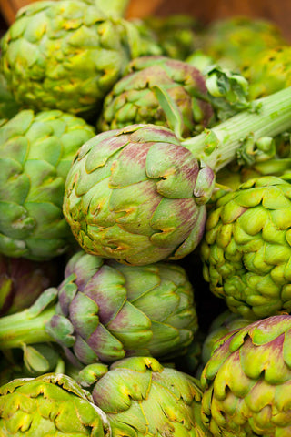 Print of Globe Artichokes for sale | Fresh Food Prints