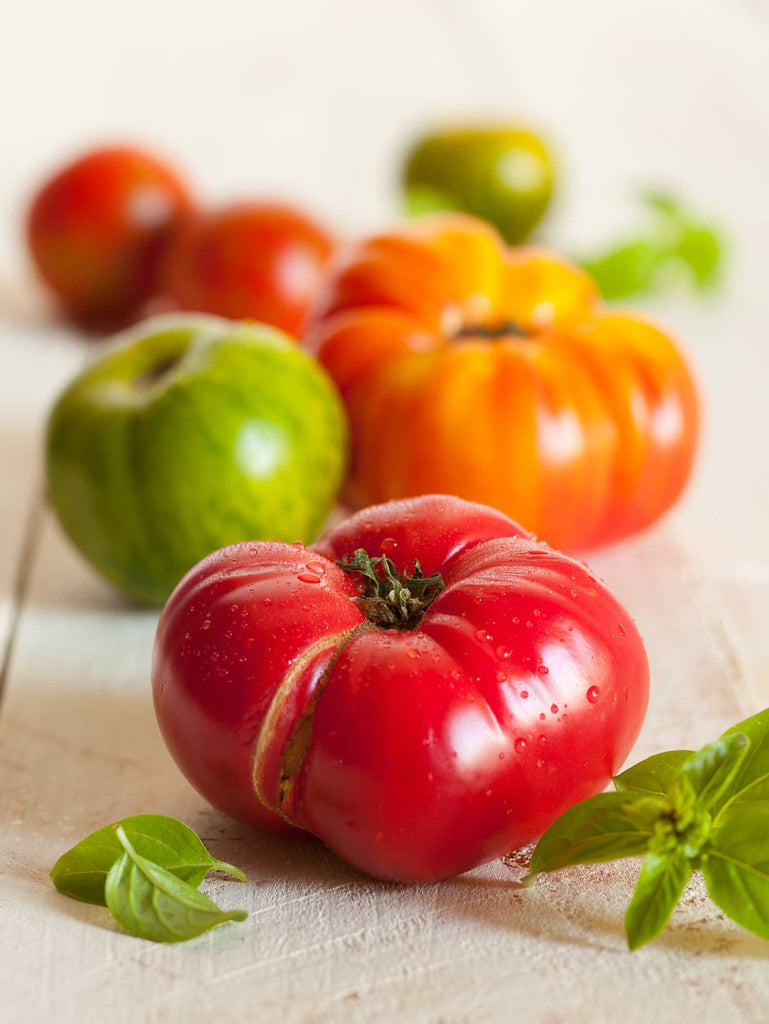 Print of Heirloom Tomatoes | Fresh Food Prints
