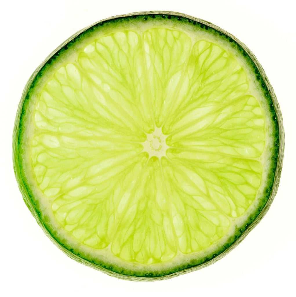 Print of lime slice on white background | Fresh Food Prints