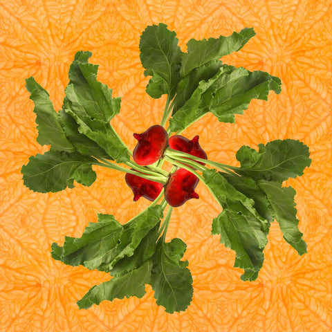 Print of Red Beet Kaleidoscope of Food | Fresh Food Prints