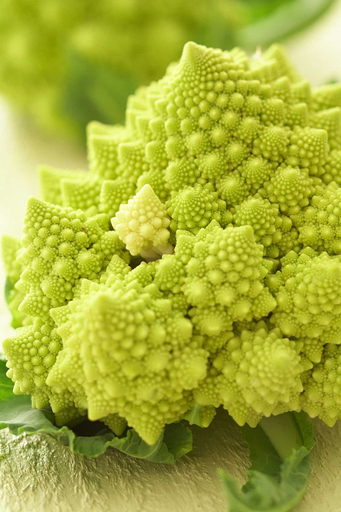 Print of Romanesco Cauliflower | Fresh Food Prints