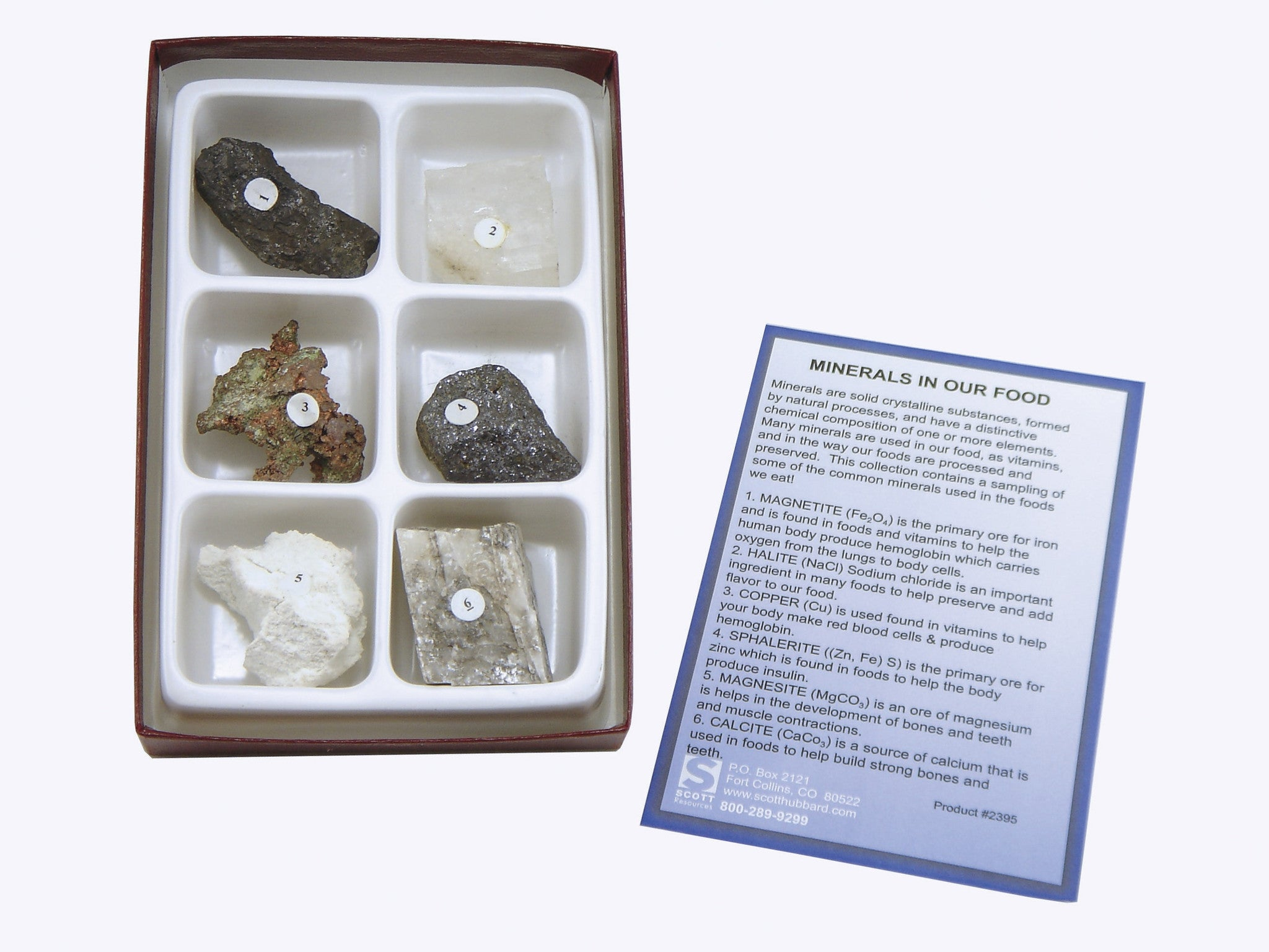 Minerals in our Food Collection 6 Piece Rock Kit - Off The Wall Toys and Gifts