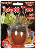 Dragon Tree Egg Micro Terrarium w/Seeds - Off The Wall Toys and Gifts