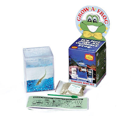 Grow a Frog Tadpole Kit by Three Rivers - Off The Wall Toys and Gifts