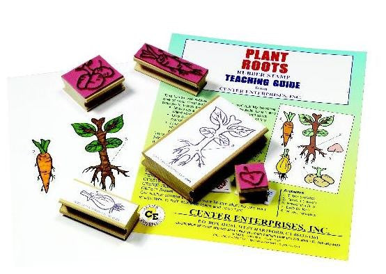 Lifecycle of Plant Roots Rubber Stamper Set: 5 Stamps & Teachers Guide