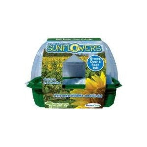 Grow Your Own Sunflowers Kit w/Seeds - Off The Wall Toys and Gifts