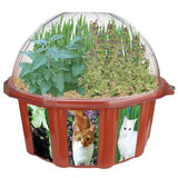 Cat's Fantasy Catnip Plant Growing Seeds & Terrarium Kit - Off The Wall Toys and Gifts