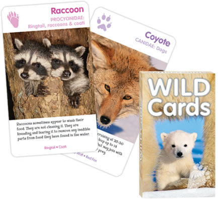 Wild Animals Playing Cards: 3 Games In One Wildlife Deck - Off The Wall Toys and Gifts