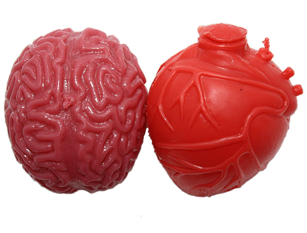 Realistic Heart / Brain Pair Novelty Splat Ball Toys Combo Pack