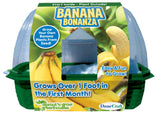 Banana Bonanza Sprout 'n Grow Greenhouse Kit w/Seeds - Off The Wall Toys and Gifts