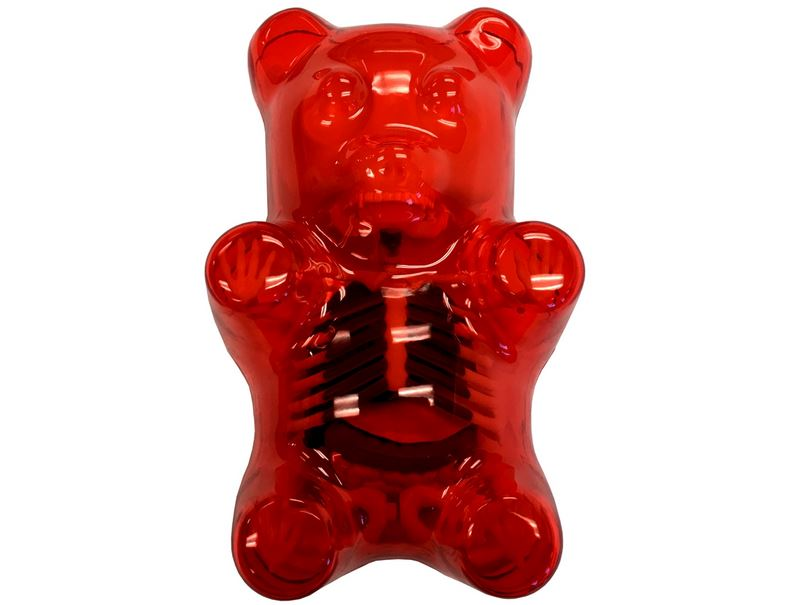 4d Master Red Gummi Bear Skeleton Anatomy Model Off The Wall Toys