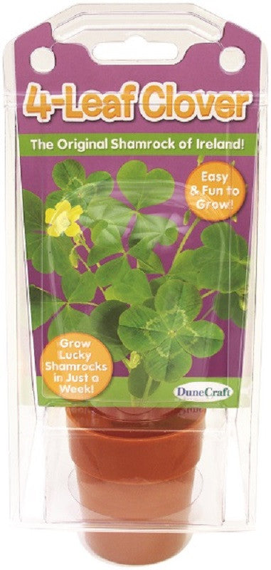 Grow Your Own 3 & 4 Leaf Shamrock Clover Kit w/Seeds