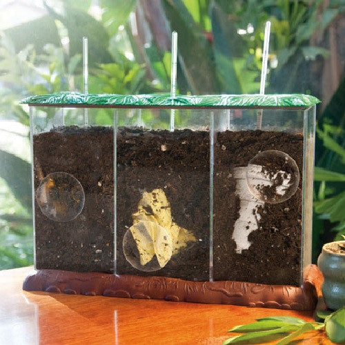 See-Through Compost Container: Green Science: Recycle - Off The Wall Toys and Gifts