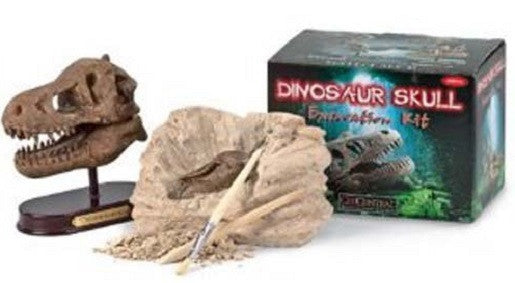 GeoCentral Dinosaur Skull Excavation Kit - Tyrannosaurus Rex - Off The Wall Toys and Gifts