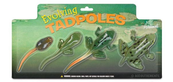 Evolving Tadpoles - Life Cycle Tadpole to Frog Transformation